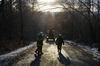 u.č.14/2013_TP-odstranění nebezpečných stromů